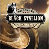 Black Stallion logo